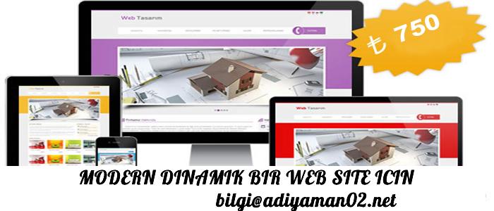 499 TL WEB SİTESİ